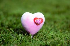 Heart. A heart on a lawn Stock Photos