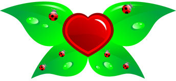 Heart and leaf Stock Images