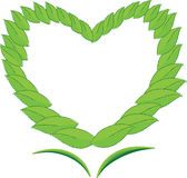 Heart with Leaf. Of frame on white background Stock Photography