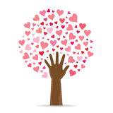 Heart Leaf Tree Royalty Free Stock Image
