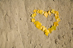 Heart from leafs on the sand Royalty Free Stock Images