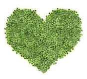 Heart of leaves Royalty Free Stock Photos