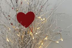 Heart. Lights background Royalty Free Stock Photos