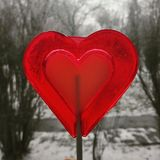 Heart. Love is in the air Stock Image