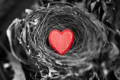 Heart Love Nest Valentine Royalty Free Stock Image