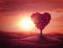 Heart love tree Stock Image