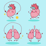Heart and lung do exercise Royalty Free Stock Image