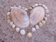 Heart. Made of shells on the sand Royalty Free Stock Photo