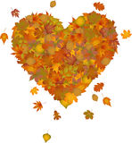 Heart made of autumn leaves Royalty Free Stock Photos