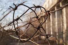 Heart made of barbed wire on a building background. royalty free stock image