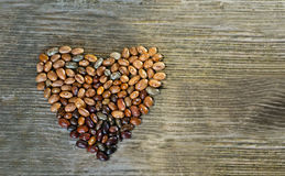 Heart made of beans Stock Photos