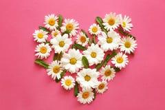 Heart made of beautiful chamomile flowers stock image