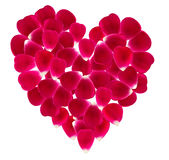 Heart made of beautiful rose petals. Royalty Free Stock Images