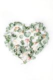 Heart made with beige roses and green leaves isolated on white background Stock Image