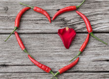 Heart made of Chili Pepper with rose-petal inside. On wooden background royalty free stock photography