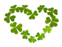 Heart made of clover Stock Images