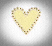 Heart made of daisies Stock Image
