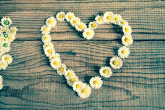 Heart made of daisies flowers Stock Photo