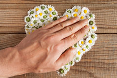 Heart made of daisies flowers in wooden background Stock Photography