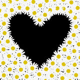 Heart made of daisy flowers Stock Photography