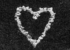A heart made from flowers. Blossom of hydrangea on grass full, black and white Royalty Free Stock Photos