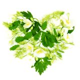 Heart Made of Flowers and Leaves Royalty Free Stock Image