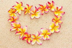Heart made of frangipani or plumeria flowers on sand, top view.  royalty free stock photography