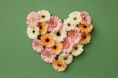 Heart made from fresh gerbera flowers Royalty Free Stock Images
