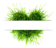 Heart made of grass and copy-space Royalty Free Stock Photography