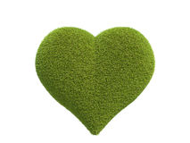 Heart made of grass Stock Photography