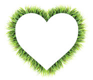 Heart made of grass isolated on white Royalty Free Stock Photo