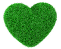Heart made of green grass isolated Stock Image