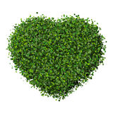 Heart made from green leave. Beautiful graphic made of green leaves on gradient background Royalty Free Stock Images