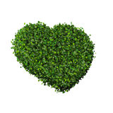 Heart made from green leave. Beautiful graphic made of green leaves on gradient background Stock Image