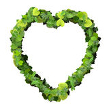 Heart made from green leave. Beautiful graphic made of green leaves on gradient background Stock Photography