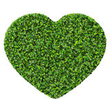 Heart made from green leave. Royalty Free Stock Photos