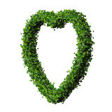 Heart made from green leave. Royalty Free Stock Photography