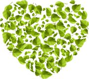 Heart made of green leaves. Eco concept Royalty Free Stock Image
