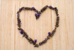 Heart made of lavender flowers Royalty Free Stock Photos