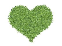 Heart made of leaves Royalty Free Stock Image