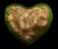 Heart made of natural gold snake skin texture isolated on black. 3d. Rendering stock illustration