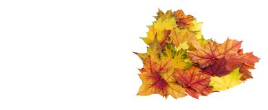 Free Heart Made Of Fresh Fall Leaves Isolated On White Background As A Design Element For Autumn Love Or Another Related Themes. Royalty Free Stock Photos - 182484038