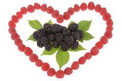 Heart made out of raspberries and blackberries. Top leaves of bl Stock Image