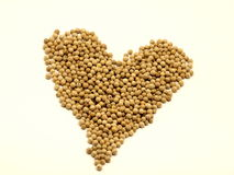 Heart made of Pepper. Heart made from dry pepper Stock Image