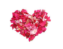 Heart made of petals Stock Image