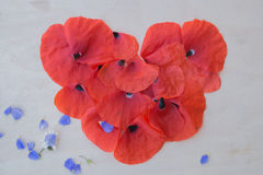 Heart made from petals of poppy on a wooden background Stock Photography