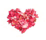 Heart made of petals of roses Stock Image
