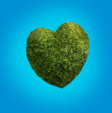 Heart made of plants Royalty Free Stock Images