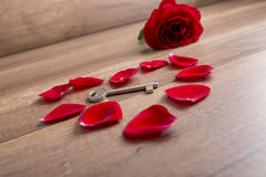 Heart made of red rose petals with a key lying in the middle Royalty Free Stock Photos