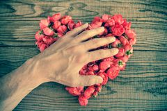 Heart made of red roses in wooden background, covered by an hand. To represent personal feelings, denim effect stock photo